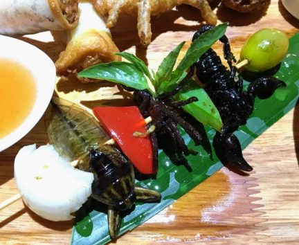 サソリ、クモ、タガメのケバブ(Photo by 朝比奈)