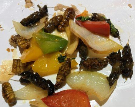 カイコとコオロギと野菜炒め物(Photo by 朝比奈)