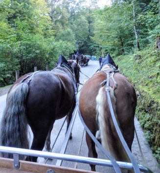 歩いている皆さんと、頑張ってくれているお馬さんにひたすら申し訳ない気分でした(Photo by 朝比奈)