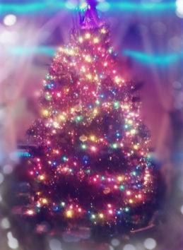 皆さんが素敵なクリスマス、そして2019年を元気に迎えられますように。(Photo by Austin)