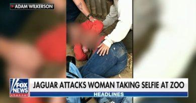 腕を鋭い爪でひかっかれた女性