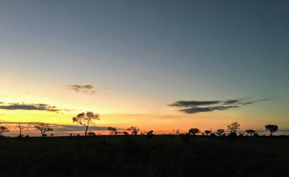 日が沈む美しさを堪能した後、夜のサファリこそが楽しみ(Photo by 朝比奈)