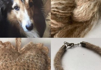 愛犬・愛猫の毛でマフラー、アクセサリーを! 毛を紡ぐビジネスが絶好調 米