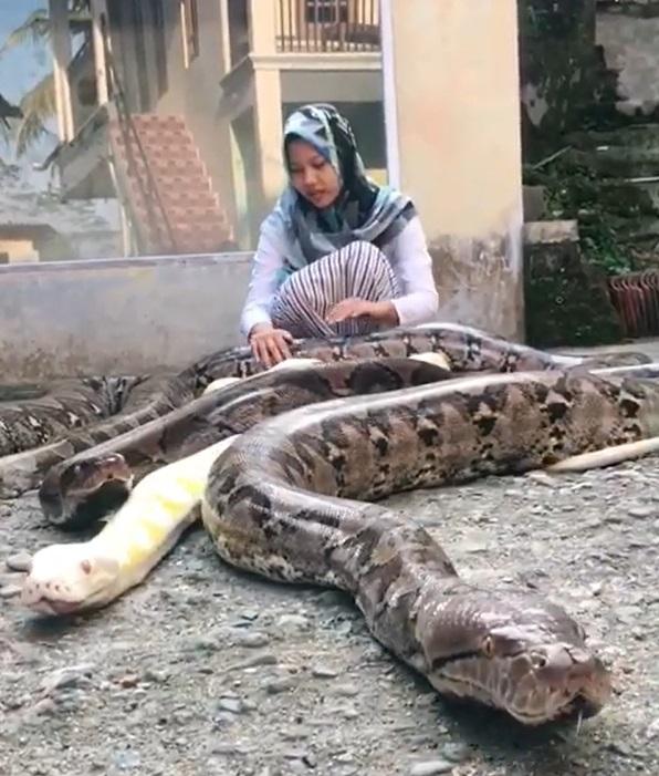 ヘビと一緒の生活がもう当たり前だという少女(画像はInstagramのスクリーンショット)